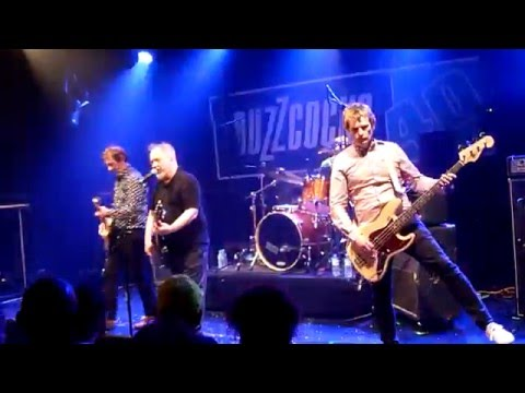 Buzzcocks - Live Forum Vauréal 2016